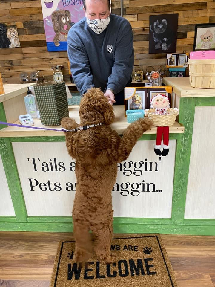 LotsAPaws Barkery and Boutique